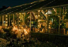 green house envy
