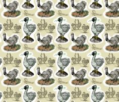 """Doodles of Dodos"" custom fabric designed by the_fretful_porpentine on Spoonflower.com."