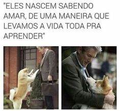 Sempre ao seu lado Baby Dogs, Dogs And Puppies, Animals And Pets, Cute Animals, Kawaii, Love Pet, Quote Posters, Shih Tzu, Dog Bed