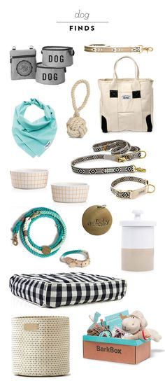 Puppy Accessories - Keep your dog happy and healthy with the dog supplies they need in every stage of life. Check out these puppy accessories and products. Cute Puppies, Cute Dogs, Puppies Stuff, Cute Dog Stuff, Cute Dog Toys, Poodle Puppies, Chihuahua Dogs, Pet Stuff, Dachshund Funny