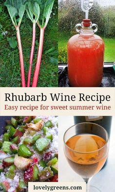 Homebrewing cider Rhubarb Wine Recipe -- easy to recipe for making sweet summer wine Homemade Wine Recipes, Homemade Alcohol, Homemade Liquor, Canning Recipes, Wine And Liquor, Wine And Beer, Liquor Drinks, Bourbon Drinks, Rhubarb Harvest