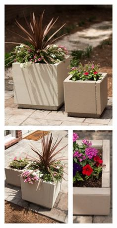 Creative Ways to Increase Curb Appeal on A Budget - DIY Concrete Planters - Cheap and Easy Ideas for Upgrading Your Front Porch, Landscaping, Driveways, Garage Doors, Brick and Home Exteriors. Add Window Boxes, House Numbers, Mailboxes and Yard Makeovers http://diyjoy.com/diy-curb-appeal-ideas