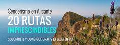 10 Rutas de senderismo imprescindibles en Alicante - LinkAlicante Murcia, Valencia, To Go, Curriculum, Wealth, Hiking Trails, Walks, Vacations, Scenery