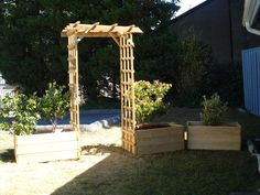 DIY Back Garden Trellis and Plant Boxes..Photo By Lorne A Lyons