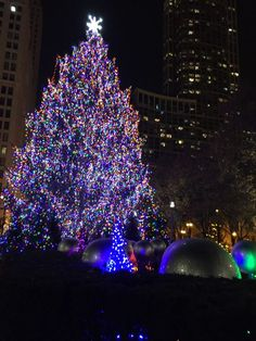 """Christmas in """"the windy city"""" is not to be missed. It's windy. It's totally worth it!"""