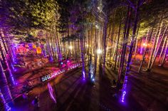 Electric Forest 2014 | Lineup | Tickets | Dates | Video | News | Rumors | App