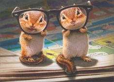 Birthday Greeting Card - Chipmunks with Thick Glasses