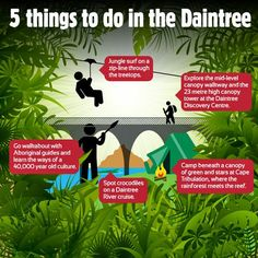 Top 5 thongs to do in the DAINTREE RAINFOREST QLD AUSTRALUA... Rainforest Destruction, Daintree Rainforest, Gypsy Rose, Thongs, Discovery, Things To Do, Surfing, Earth, Explore