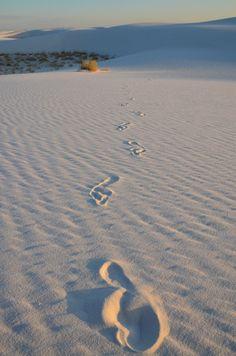 White Sands National Monument, near Alamogordo, New Mexico