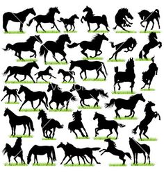 Horses silhouettes set vector art - Download Silhouettes vectors