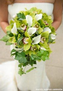 white calla lillys and green orchids