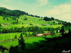 bucatica de rai Golf Courses, Vineyard, Mountains, Nature, Travel, Outdoor, Outdoors, Naturaleza, Viajes