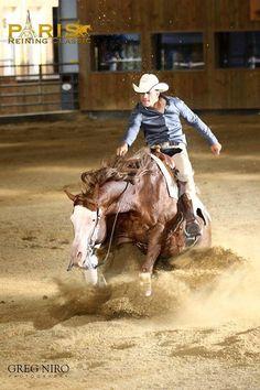 ® Copyright TP Reining Horses https://www.facebook.com/tpreininghorses