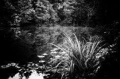 Klagenfurt, Dark Backgrounds, Shades Of Black, Light In The Dark, The Darkest, Monochrome, Black And White, Artist, Photography