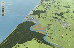 "Manawatu Estuary: ""muddy wasteland"" to ""Wetland of International Importance"" 19th Century, Ocean, River, The Ocean, Sea, Rivers"