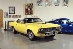 This #Cuda was shared on our Facebook page.