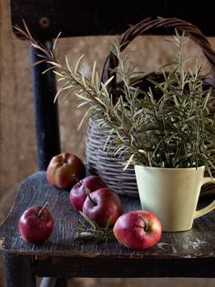 Apples & Rosemary