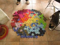 a rug i made out of cotton yo-yo's. the picture does not do it justice! (my cat also enjoyed it, haha)