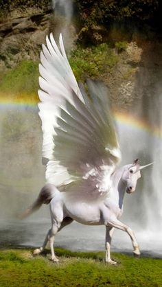 I have an obsession with UNICORNS!!!!!<3