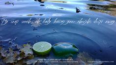 My tea tree soap brings that natural feeling Tea Tree Soap, Soap Company, My Tea, Soap Making, Essential Oils, Web Design, Lime, Healing, Bath