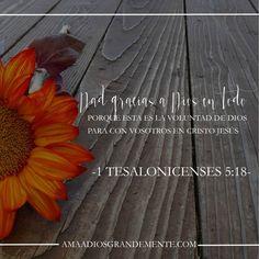 Ama a Dios Grandemente