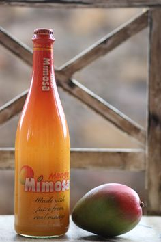 1000 Images About Mimosa 39 S Make Me Happy On Pinterest