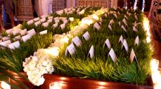 wheatgrass and table assignments