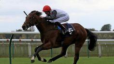 Ten to follow for the new flat season - Horse Racing - Sporting Life