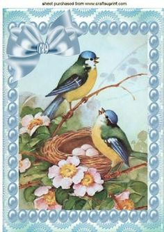 PRETTY BLUE BIRDS IN A NEST WITH PEARLS A4 on Craftsuprint - Add To Basket!