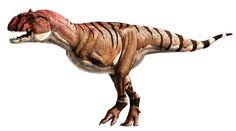 STUPID ARMS!! Majungasaurus.