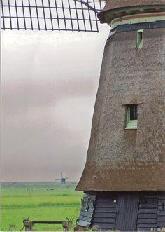Windmills in #Holland (Photo: Holland.com)