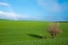 El dominio del verde Granada, Golf Courses, Stoves, Boiler, Naturaleza, Green, Grenada