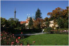 Petrin Hill I Prague