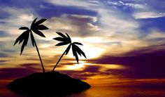 Google Image Result for http://2expertsdesign.com/images/pictures-photos/78-Tropical-Sunset.jpg