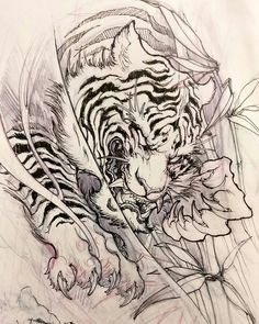 Japanese designs to draw tiger tattoo design japanese tattoo sleeve designs drawings . Irezumi Tattoos, Kunst Tattoos, Body Art Tattoos, Tebori Tattoo, Japanese Tiger Tattoo, Japanese Tattoo Designs, Japanese Sleeve Tattoos, Tattoo Design Drawings, Tattoo Sleeve Designs