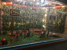Shop Window Display. Stihl Australia. Chainsaw. Forest. Trees.