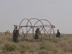 This is a Somali Aqal (hut) being constructed – and as I mentioned before, you'd notice that it is only women who build the huts. The men usually gather the wood from the Galool, Dhumay trees etc, and then the women get to work. The above hut being constructed is called Saddex-dhigood, meaning it is made out of three arched Gob branches as you can see above. This is the smallest hut constructed and the largest is made out of Seven. The most common huts though are made out of either three or…