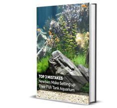 Top 3 Mistakes Tropical Freshwater Fish, Starter Kit, Fish Tank, Mistakes, Fresh Water, Aquarium, Top, Goldfish Bowl, Fishbowl