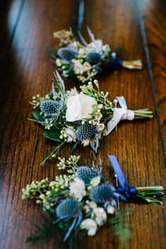 Floral Designer in Lancaster County, Pennsylvania. For these blue and white boutonnières for the groom and his groomsmen, we used blue eryngium thistle with white astrantia, seeded eucalyptus, plumosa Blue Wedding Flowers, Floral Wedding, Wedding Colors, Wedding Bouquets, Navy Blue Flowers, Blue Orchids, Wedding Ideas, Winter Wedding Boquet, Navy Spring Wedding