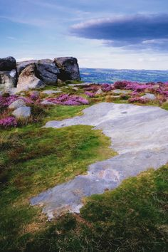 The Cow and Calf, Ilkley Moor, Ilkley, West Yorkshire, England. #travel #nature #yorkshire #ilkley #ilkleymoor #cowandcalf #summer #heather #landscape
