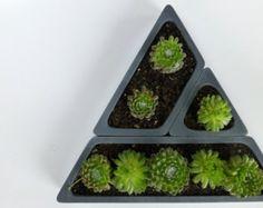 Concrete Succulent Planter Set Triangular di ConcreteProject