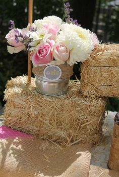 Vintage Girly Western Petting Zoo Birthday Party Ideas | Photo 2 of 42 | Catch My Party