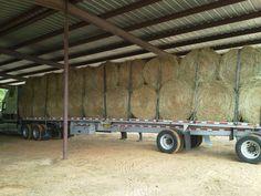 We help you feed em horses!