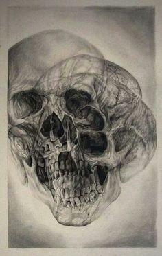 Skulls & Illusions