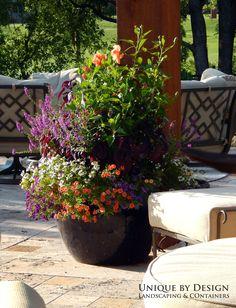 Unique by Design l Helen Weis : Container Gardening