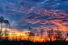 Blue Bayou Sunset