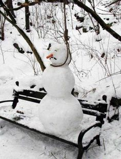 Even The Snowman Knows How I Feel About Cold Weather ;(