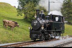 11 RhB - Rhätische Bahn G 3/4 at Sumvitg-Cumpadials, Switzerland by Georg Trüb