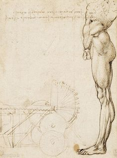 davinci-works-anatomy-sketches-nude-in-profile-machinery-.jpg