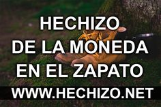 Hechizo de la Moneda en el Zapato Fen Shui, Tips Online, White Magic, Tantra, Yin Yang, Karma, Quote Of The Day, It Cast, Inspirational Quotes